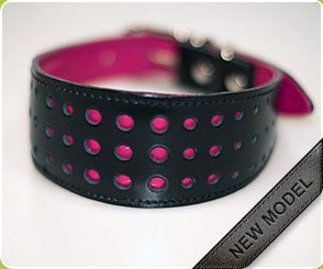 Fuchsia Pink Hound Collar - Dog Moda's dog collars for hounds