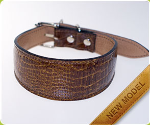 Safari Desert Hound Collar - Dog Moda Hound Collars for Hounds