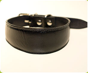 Classic black leather deluxe hound collar for hounds