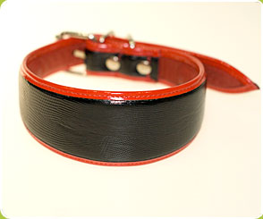 Classic Black Snake Collar with Red Piping for hounds